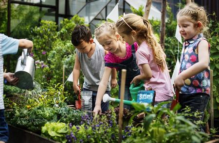 Group of kindergarten kids learning gardening outdoors Stock fotó