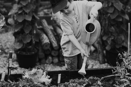 Kid in a garden experience and idea Stok Fotoğraf
