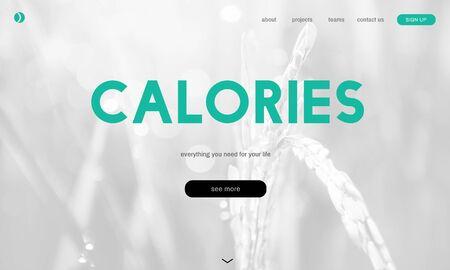 건강한 라이프 스타일 온라인 웹 페이지 인터페이스