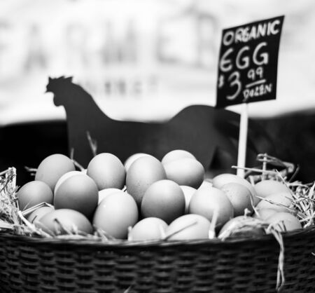 Fresh Chicken Rooster Eggs on Hay at Local Farmer Market Stock Photo