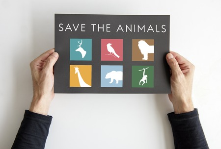Hand holding a banner with save animals graphic Stock Photo