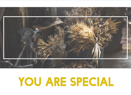 You are special and different. Stock Photo