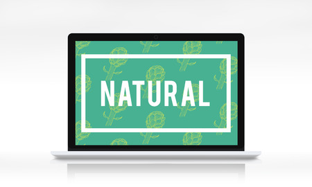자연 활력 그래픽 디자인 워드를 되살리는 스톡 콘텐츠