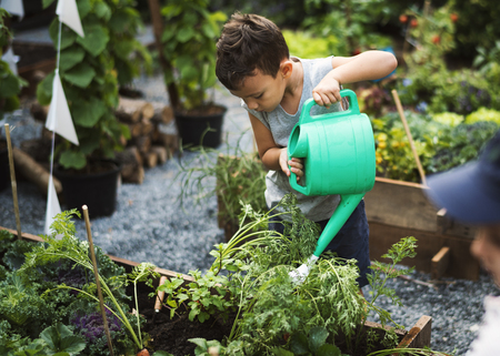 Children are in the garden watering the plants Stock Photo