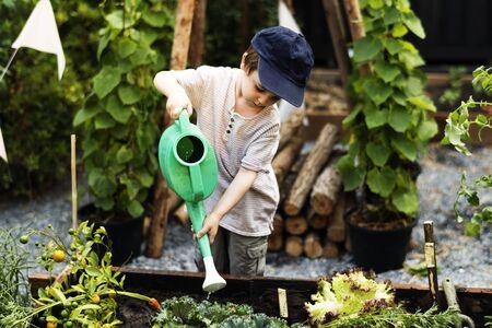 식물에 물을주는 정원에 아이들이 있습니다.