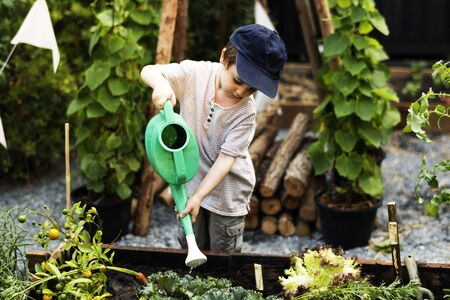 Children are in the garden watering the plants Stok Fotoğraf