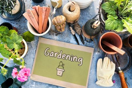 ナチュラル ガーデン植物ガーデニングのイラスト 写真素材