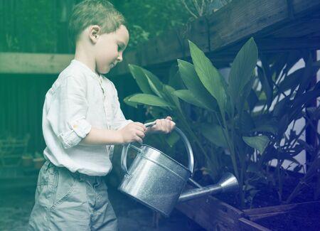 Little boy watering plants in garden