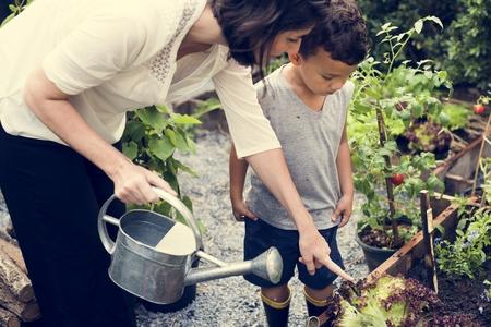 Kind in de tuin die de installaties water geeft Stockfoto