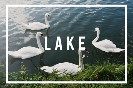 Lake concept with background