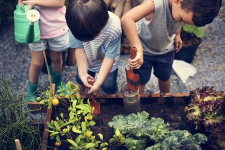 농장에서 다양한 어린이 학습 환경의 그룹
