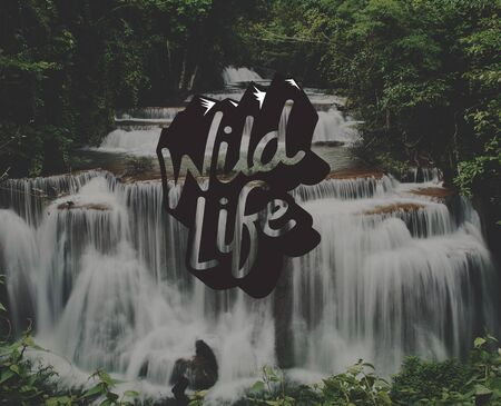 Wild Life Free Natural Word Graphic Stock Photo