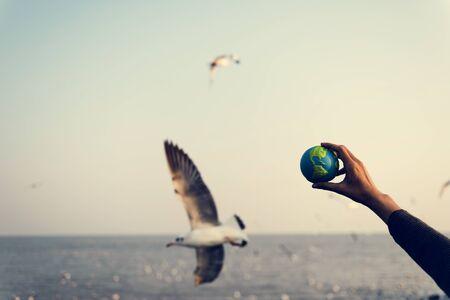Hands Hold Global Green Environment Ecology