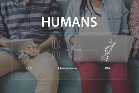 woman on phone: Group of students learning biology humanity life science genetic research Stock Photo