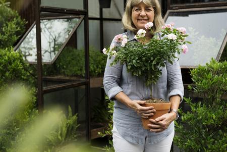 Mature Pottery Care Nature Plant