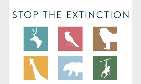 Save endangered animals icon graphic Banco de Imagens - 79308819