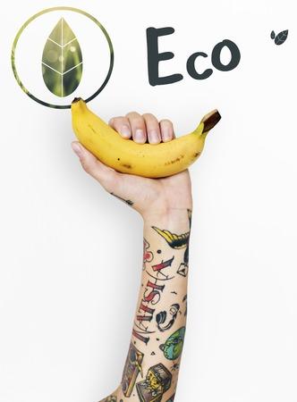 Ecology Environment Save Earth Organic