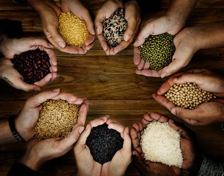 Groep handen die gezond voedsel landbouwproduct houden Stockfoto - 79384454