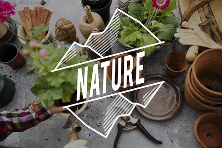 식물 배경에 자연 단어 스톡 콘텐츠