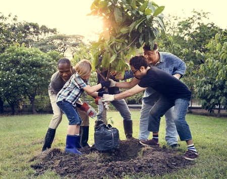 Group of people plant a tree together outdoors Archivio Fotografico