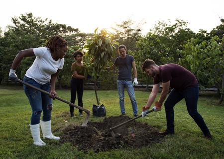 Grupo, diverso, gente, cavar, agujero, plantar, árbol, juntos Foto de archivo - 79900166