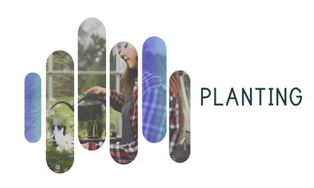Planting word on plants background Stock Photo