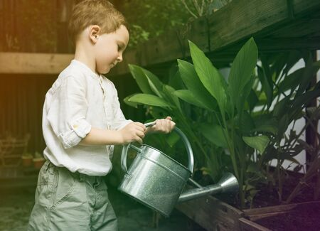 freetime: Little boy watering plants in garden