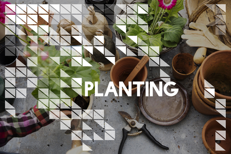 Planting word on plants background 版權商用圖片