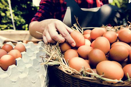 地元の農家の市場で新鮮な鶏の卵を売る女性 写真素材