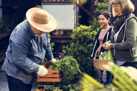 Gruppe von Menschen Gartenarbeit Gartenarbeit zusammen Standard-Bild - 80275940