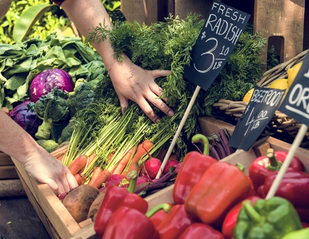 Greengrocer preparing organic fresh agricultural product at farmer market Stok Fotoğraf - 80276195