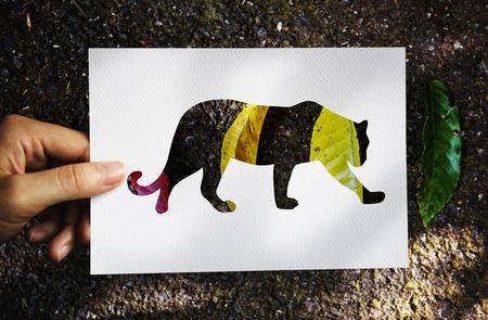 Animal Instinct Natural Survive Wildlife
