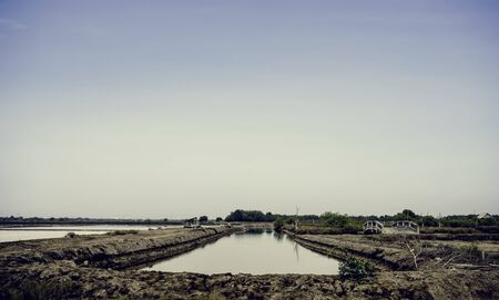 Marsh scenic locations landscape outdoors Banco de Imagens