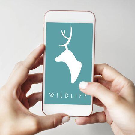 Green deer wildlife graphic illustration