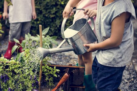 Children are in the garden watering the plants Banco de Imagens