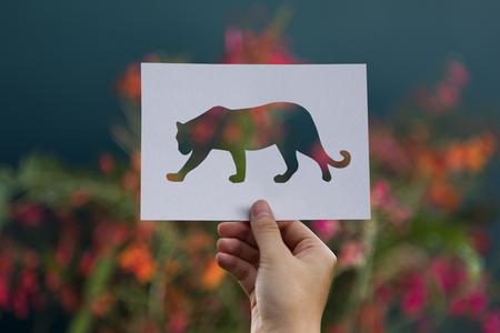 Silhouette of panther against flowers Foto de archivo - 113676705