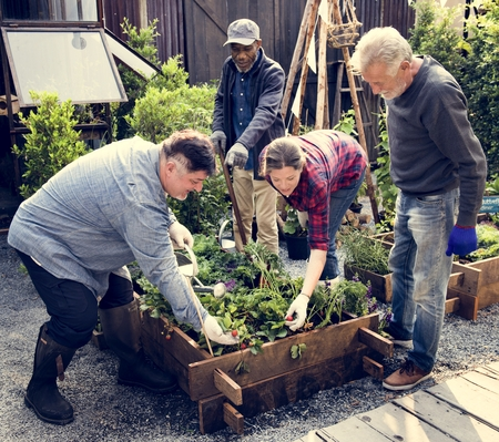 Group of people gardening backyard together Stock Photo