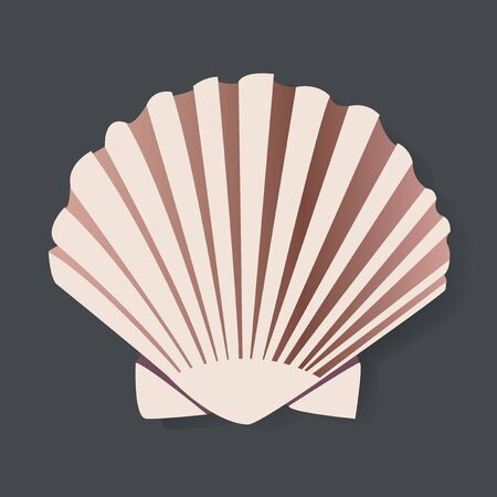 Seashell Vector Illstration grafisch ontwerp Stockfoto - 81553220