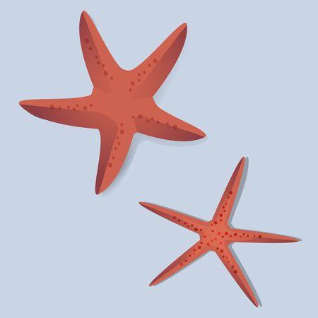 2 つの赤いヒトデ ベクトル Illustrarion  イラスト・ベクター素材