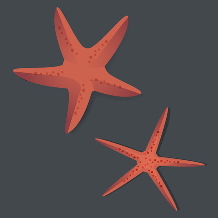 Two Red Starfish Vector Illustrarion Illustration