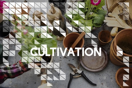 Cultivation word on plants background