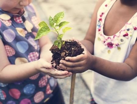 Kind gaat een boom planten Stockfoto