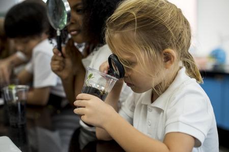 理科の授業で植栽を学ぶ多様な幼稚園生のグループ