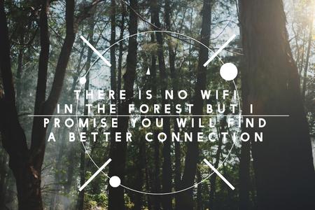 Non c'è wifi nella foresta ma nuova connessione. Archivio Fotografico - 81374626