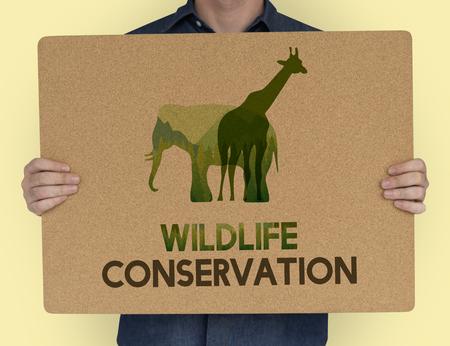 Save Wildlife Protect World Concept