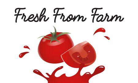 Organic Vegetables Fresh Tomato Concept Banco de Imagens