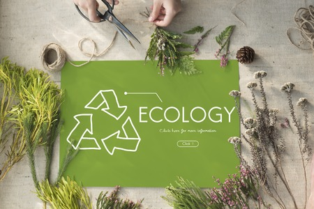 Ecology Recycle World Green Healthy Imagens