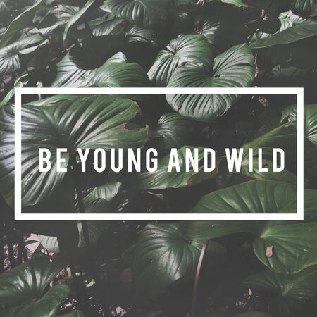 Be Young and Wild Word on Leaves Background Imagens