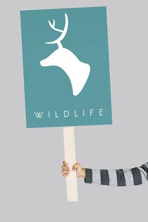 緑鹿が野生動物図