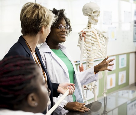Biology teacher teaching anatomy with diverse high school students Stock fotó